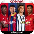 足球直播网易版
